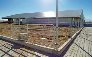 CALINOS HOLDING - INTEGRATED LIVESTOCK COMPLEX